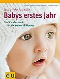 Das große Buch für Babys erstes Jahr: Das Standardwerk für die ersten 12 Monate - Stephan Heinrich Nolte, Annette Nolden