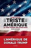 vignette de 'Triste Amérique (Michel Floquet)'