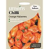 Paquete de 10 semillas de pimientos (chili), color naranja Habanero, de Unwins