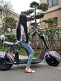 RFV Coche eléctrico de Diny Tiny, Bicicleta para Adultos, Viaje con batería pequeña, Scooter Plegable, Adecuado para Viajes, Seguro, Seguro y Conveniente/Negro / 125 * 55 cm