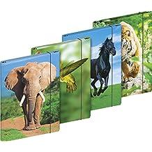 Brunnen 1041646341 Heftbox f/ür A4, aus Karton, mit Gummizug, Motiv Fans of Earth