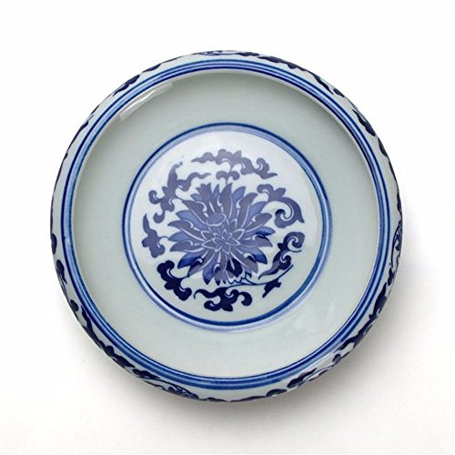 lostryy-blu-e-bianca-porcellana-posacenere-guscio-frutta-piatto-goldfish-bowl