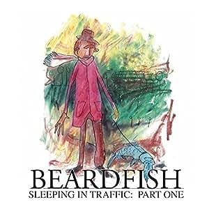 Sleeping in Traffic:Part One