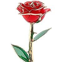 24K oro fiore regalo per moglie, migliore regalo di San Valentino, a mano e Last Forever (Rosso/Blu/Rosa)–Confezione regalo confezionato Red