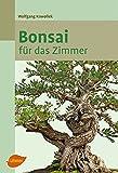 ZUNTO bonsai pflege Haken Selbstklebend Bad und Küche Handtuchhalter Kleiderhaken Ohne Bohren 4 Stück