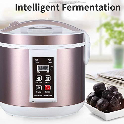InLoveArts 5L Fermentador de Ajo Negro Máquina eléctrica de fermentación de ajo Negro DIY para hogar...