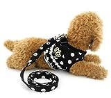 ZUNEA Hunde-Weste, bequem, Netzstoff mit Leine, Motiv Punkte Muster mit Walk Hundegeschirr für Kätzchen Hunde, Welpen und kleine Haustiere, Mädchen