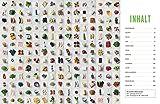 Jamies 5-Zutaten-Küche: Quick & Easy - Jamie Oliver