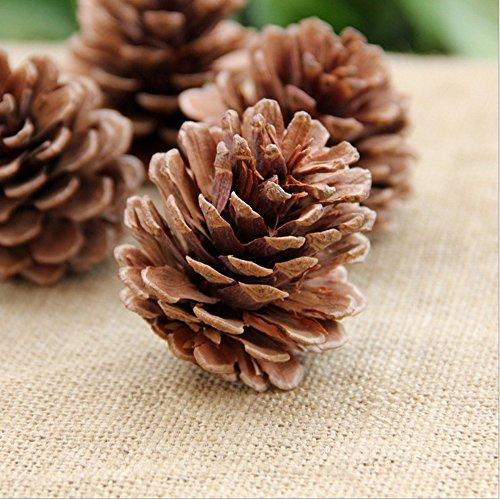 asentechuk® 10pcs Natural piñas adorno de año nuevo Partido de vacaciones de Navidad decoración accesorios, marrón, 9-12cm