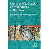 Mesures d'exécution et procédures collectives : Confrontation des règles de l'exécution et du droit des entreprises en difficulté