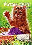 Wochenkalender Katzen 2019