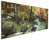 Wallario Küchen-Rückwand | Glas mit Motiv Wasserfall mit moosbedeckten Steinen im Herbstwald in Premium-Qualität: Brillante Farben, ohne Aufhängung | geeignet zum Verkleben |Spritzschutz Küche Herd Spüle | abwischbar | pflegeleicht