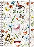 """BRUNNEN 1072985040 """"Schmetterling"""" , Schülerkalender/Wochenkalender 2019/2020 , 2 Seiten = 1 Woche , Blattgröße 14,8 x 21 cm , A5 , PP-Einband"""