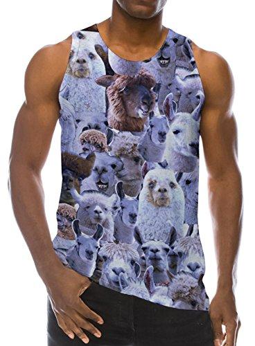 maglia alpaca