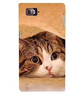 Fuson Designer Back Case Cover for Lenovo Vibe Z2 Pro :: Lenovo K920 :: Lenovo Vibe Z2 Pro K920 (Pussy Cat Pluffy cat Pet Cat Cat White Cat)