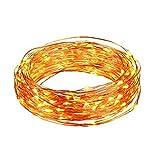 Luci stringa, Ryham 30 LED 3M 9.8ft lampada Wedding Wire Rope Natale luci a pile di filo di rame lungo per la casa camera da letto del partito Albero, bianco caldo