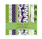 Shopaholic Spring Back Craft papers- 10 ...