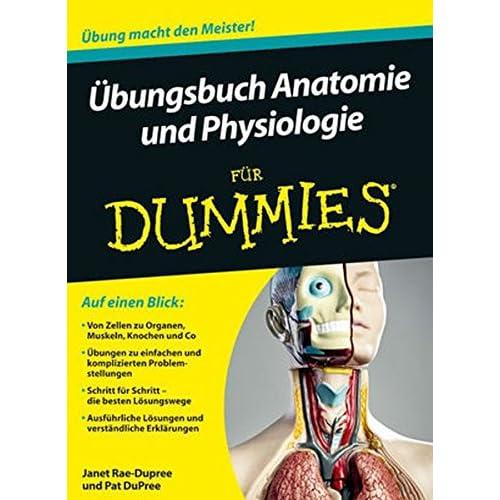 PDF] Ìbungsbuch Anatomie und Physiologie für Dummies KOSTENLOS ...