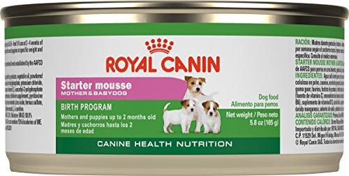 Royal Canin Canine Health Nutrition Starter Mousse Canned Dog Food, 5.8 Oz...