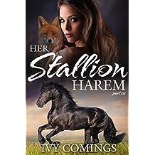 Her Stallion Harem: Part Six: A Reverse Harem Serial (English Edition)