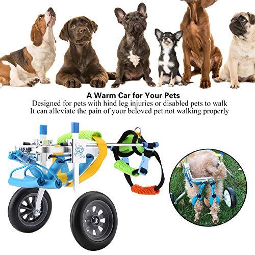 51js1LUcPBL - Silla de ruedas para perros, Rehabilitación de patas traseras Discapacitados Perro asistido Caminan dos ruedas Silla de ruedas ajustable para mascotas para gatos adultos Perros pequeños Chihuahua de P