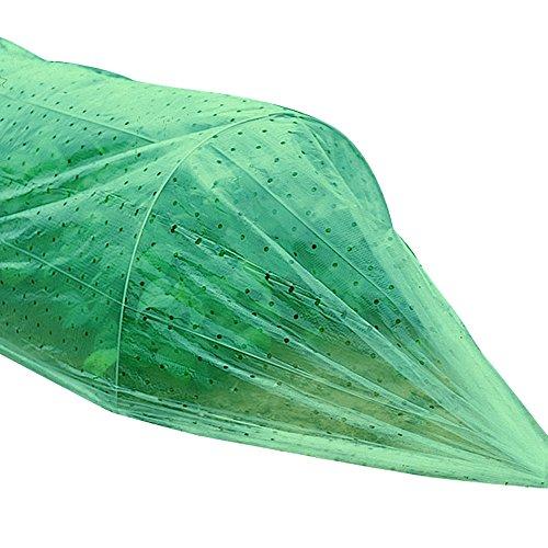 Folientunnel - Folie Gemüsebeet - Folie Garten - Pflanzenschutz - Ansaat und Anzucht Folientunnel