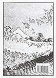 Image de Cien vistas del Monte Fuji (Wunderkammer)