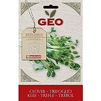 Geo Trébol - Semillas para germinar, 12.7 x 0.7 x 20 cm, color marrón