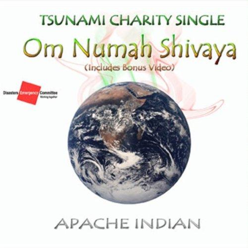 Om Numah Shivaya (Tsunami Release)