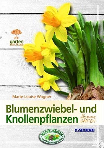 Blumenzwiebel- und Knollenpflanzen: Für naturnahe Gärten (Garten kurz & gut bei avBUCH)