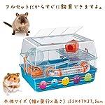 Ferplast Duna Fun Decor Hamster Cage, 55 x 47 x 37.5 cm 4