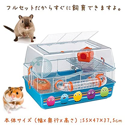 Ferplast Duna Fun Decor Hamster Cage, 55 x 47 x 37.5 cm 2