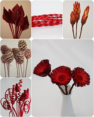 Trockenblumen mix Cane Ranke Palmspear Protea Rosette Trockengesteck