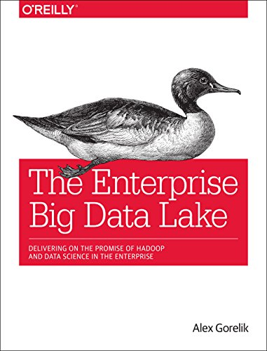 The Enterprise Big Data Lake: Delivering on the Promise of Hadoop and Data Science in the Enterprise por Alex Gorelik