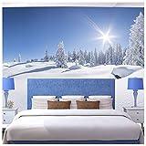 azutura Weiß Winter Foreset Fototapete Panorama Tapete Landschaft Wohnkultur Erhältlich in 8 Größen Klein Digital