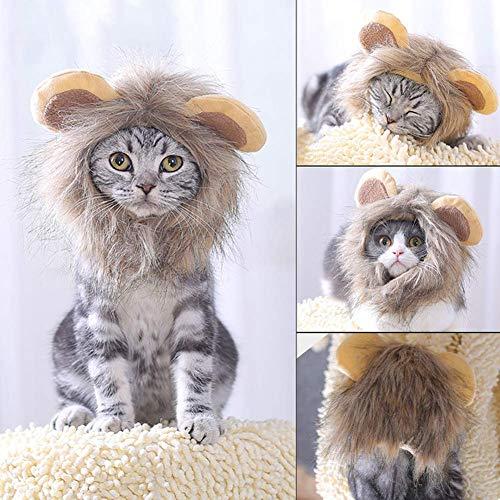 CHY Haustier Zubehör Lustige Haustier Katze Kostüm Cosplay Lion Mähne Perücke Hut Kappe Halloween Party Kopf Tragen - (Kostüm Für Haustiere Und Besitzer)