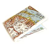 Explorer - Alaska Map - Tyvek Disguise Monedero