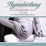HypnoBirthing: An Introductory Guide: Basic HypnoBirthing Techniques Explained (Busy Woman's Natural Birth Series)