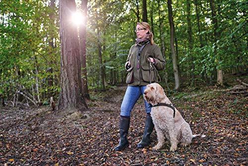 Hunter Cablaggio Norvegese Per I Cani Da Caccia 45 X 58 79cm Nero
