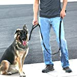 """""""ABOUT US Max and Neo Dog Gear is named after my dog Neo and my brother s dog Max. Both dogs lived happy lives in Arizona. When Neo passed away I began fostering rescue dogs. It became apparent to me that running dog rescues required alot of resource..."""