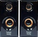 #3: Quantum QHMPL 630 USB High Blast Mini Speaker for PC/Laptop