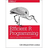 Efficient R Programming: A Practical Guide to Smarter Programming