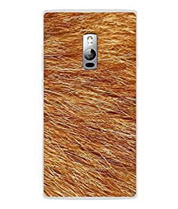 PrintVisa Designer Back Case Cover for OnePlus 2 :: OnePlus Two :: One Plus 2 (Blond Hair Grass Feather Fur)