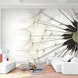 Fototapete Pusteblumen Schwarz Weiß Grau 352 x 250 cm Vlies Wand Tapete Wohnzimmer Schlafzimmer Büro Flur Dekoration Wan