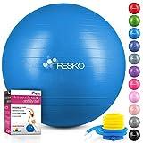 TRESKO Palla Fitness, Palla Pilates Anti-Scoppio 55cm/65cm/75cm/85cm Palla da Ginnastica con Pompa Rapida per Fitness Yoga e Pilates