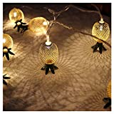 Best Pineapples - Vimlits 3D Hollowed-out Pineapple Shape Mood String Light Review