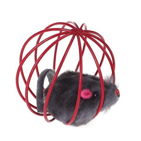 TOOGOO(R) Animal de Compagnie Chat Chaton Jouet de Jeu Drole