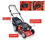Frisky Fox PLUS 20' QUAD-CUT Self Propelled Petrol Lawn Mower 4-in-1 Mulching, Cutting, Collecting & Side Discharge Powered By 5.5HP 4-Stoke OHV Engine with Fitted Lawn Striper and 55L Grass Collection Bag