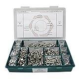 Sortiment DIN 571 Edelstahl A2 Schlüsselschrauben Durchmesser 6,0 mm, 900 Teile ; Sechskant/Holzschrauben inc. Scheiben, Material VA V2A