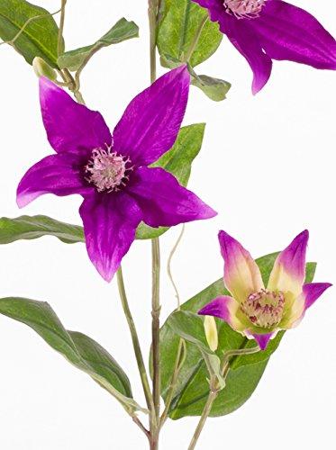 artplants Set 12 x Künstlicher Clematiszweig BARKU, 5 Blüten, lila, 80 cm – 12 Stück Deko Waldrebe/Kunstblumen Clematis